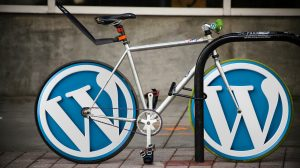 what i learned while creating wordpress websites