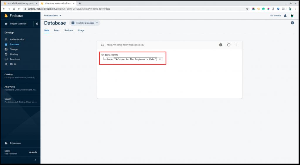 Demo data in Firebase Realtime Database